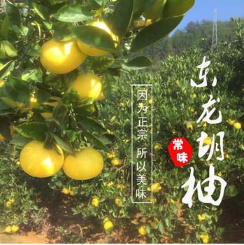 正宗常山胡柚促销新鲜水果西柚子