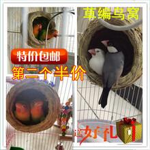 包邮 鸟窝草编鸟窝虎皮鹦鹉窝鸟巢牡丹文鸟繁殖箱鸟用具鹦鹉鸟用品