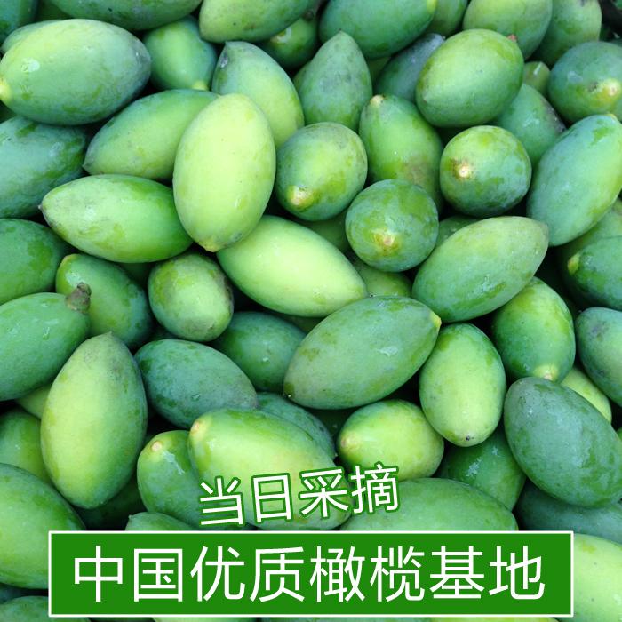 新鲜橄榄青果 中国优质青橄榄基地当日采摘宝宝水果5件包邮