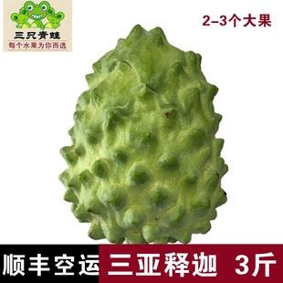 台湾凤梨释迦3斤2-3个释迦果海南三亚番荔枝新鲜水果现摘佛头果