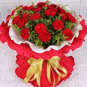 日日幸福19支红色康乃馨郑州送花母亲节父亲节教师节女人节鲜花