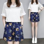 胖人女装 加肥加大显瘦两件套夏季 套装 时尚 遮肚子短裤 夏装 胖mm大码