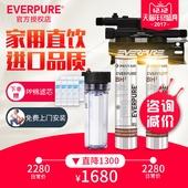 爱惠浦双联 咖啡店奶茶店制冰机BH2净水器直饮机 商用家用大流量