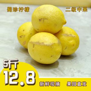 蜀珍柠檬 新鲜安岳的柠檬水 果丑果酵素榨汁切片泡水果饮多汁5斤