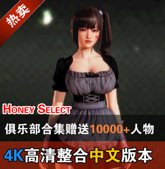 2017最新版Honey Select 3D 中文