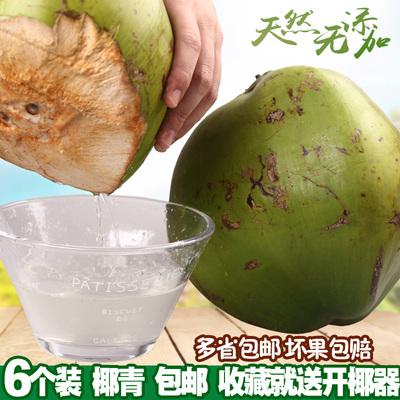 包邮 6个装 海南新鲜椰子热带水果带皮椰青特产正宗大青椰子嫩椰