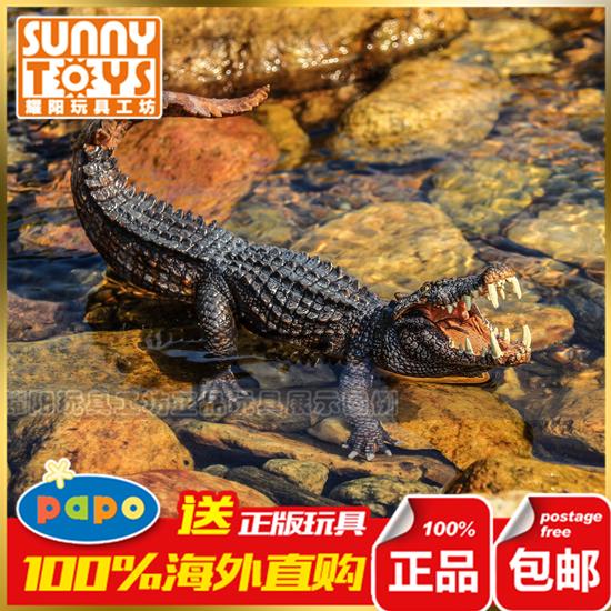 恐龙[图片耳]六耳正品v恐龙乐高恐龙博物馆名人英语恐龙演讲视频图片