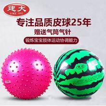 儿童球类玩具拍拍球幼儿园宝宝充气球玩具小孩西瓜皮球批发无毒