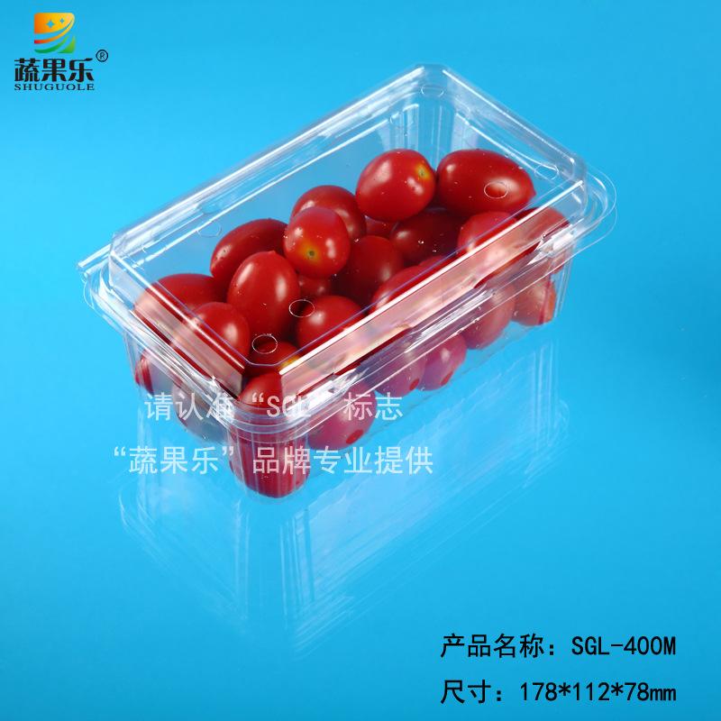 新款上市厂家直销透明果蔬盒对折吸塑盒600个起批