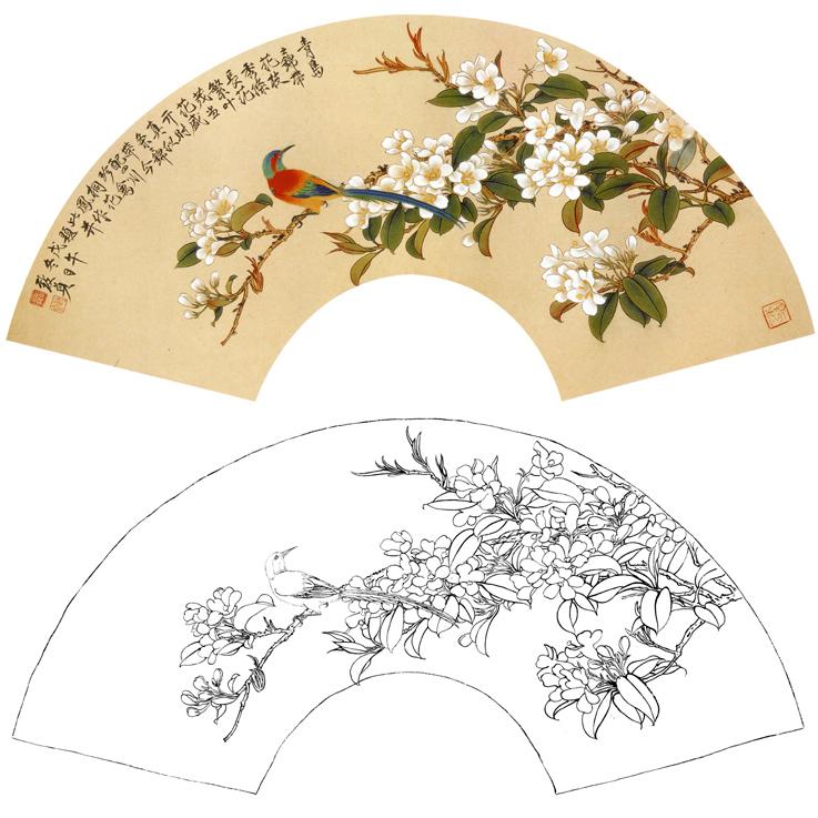 273白描底稿临摹勾线实物打印稿俞致贞高清扇面花鸟素材工笔国画
