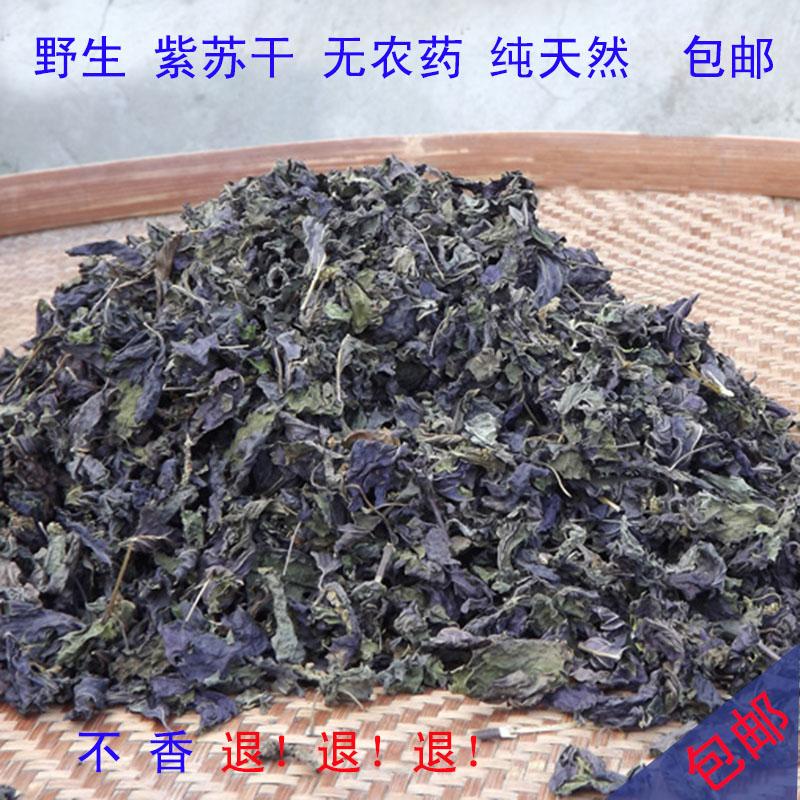 衢州特产纯天然野生紫苏叶干2014年紫苏叶去腥烧鱼虾蟹香料(带茎)