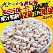 薏米仁薏仁米苡仁五谷杂粮粗粮油500g 新鲜贵州小薏米 包邮 买3送1
