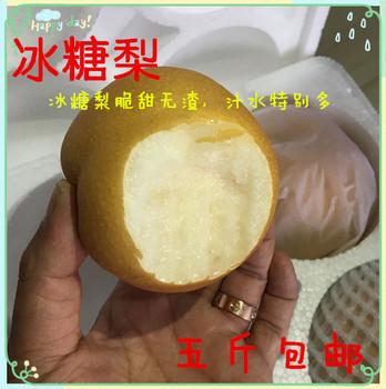 梨子新鲜水果冰糖梨非丰水来莱阳