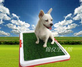 狗厕所泰迪新款特价中大号三层狗狗大小便卫生草坪盘拍下即送草坪