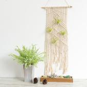阿楹 波西米亚艺术手工编织挂毯 北欧客厅卧室仿真绿植装饰棉壁毯