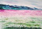 清新水彩画装饰画花朵天空草地原作纯手绘水彩风景画100