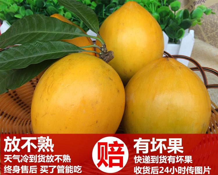 新鲜鸡蛋果 蛋黄果  狮头果 热带水果5斤装28元包邮 海南鸡蛋果