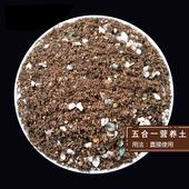 绿野自配五合一 配制营养土泥炭土火山岩多肉植物种植培养土