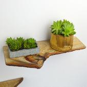 樟木原木自然置物架隔板壁挂书架墙壁上装饰实木花架一字搁板