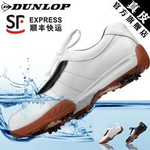 英国DUNLOP官方正品高尔夫球鞋男款牛皮golf透气防水高尔夫鞋子