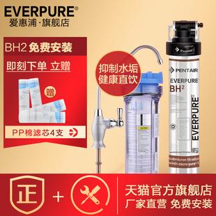 美国爱惠浦直饮净水器BH2款厨房厨房直饮净水器净水器