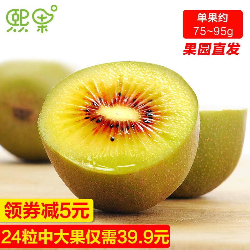 四川蒲江红心猕猴桃奇异果24粒中大果弥猴桃新鲜水果包邮当季批发