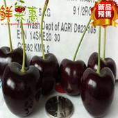 预售智利车厘子JJ级 进口大樱桃2斤装 空运新鲜水果顺丰包邮