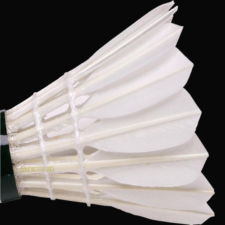 羽毛球 12只装耐打羽球 户外运动用品 训练型羽毛球 战甲ZJ7710