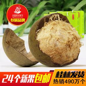 百寿元 罗汉果 大果新鲜罗汉果茶广西桂林永福特产24个果干 包邮