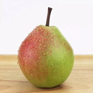 【天天特价】七月红啤梨5斤包邮 红美酥梨 新鲜水果雪梨西洋香梨