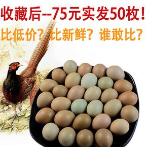 【50枚】野鸡蛋土鸡蛋七彩山鸡蛋散养新鲜草鸡蛋喜蛋礼盒装柴鸡蛋