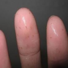 祛黑头脂肪粒按摩膏按摩霜 清除角栓白头净化毛孔 促进护肤品吸收
